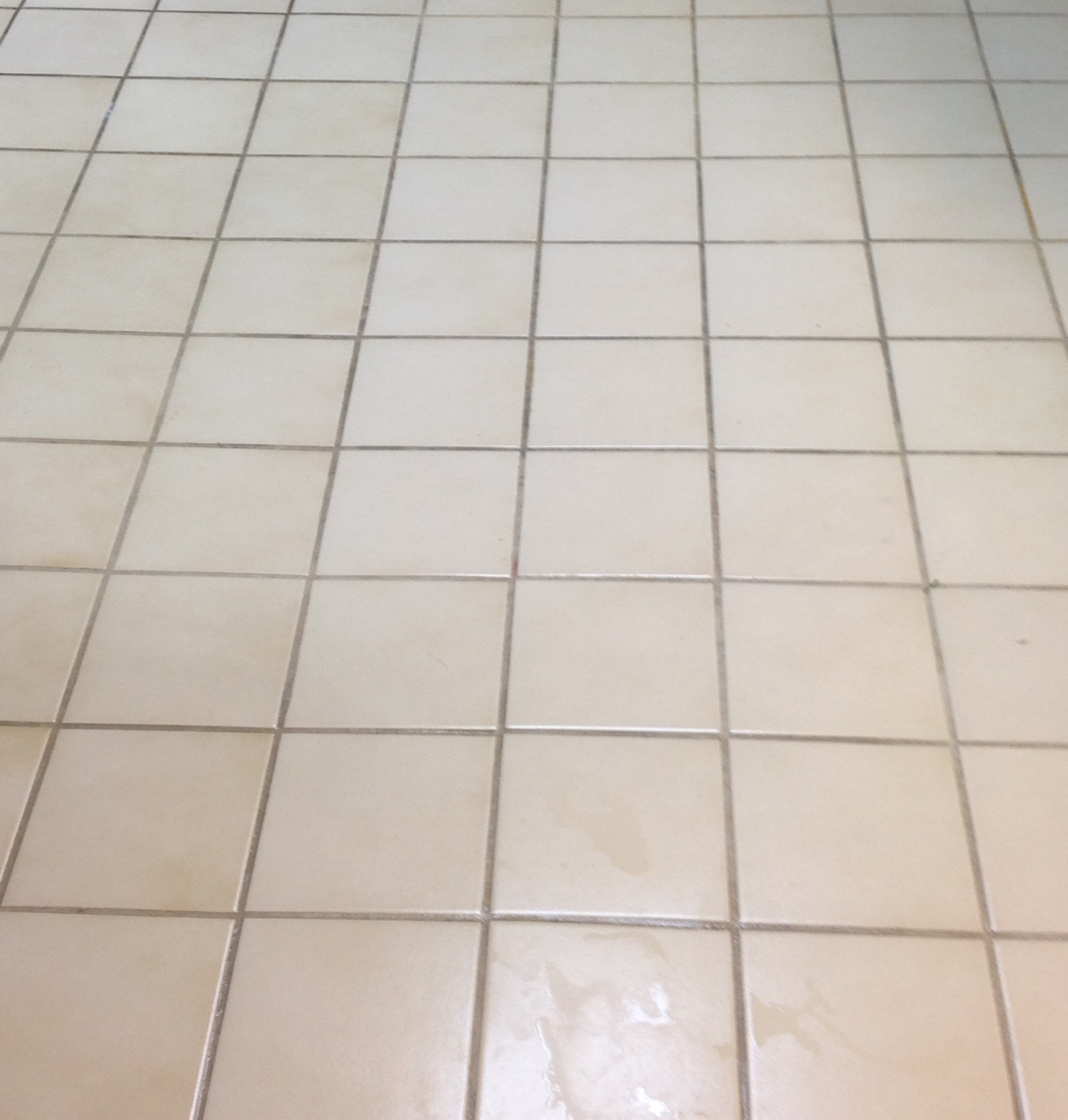 Ceramic Tile And Grout Cleaning Martins Floor Coverings Inc